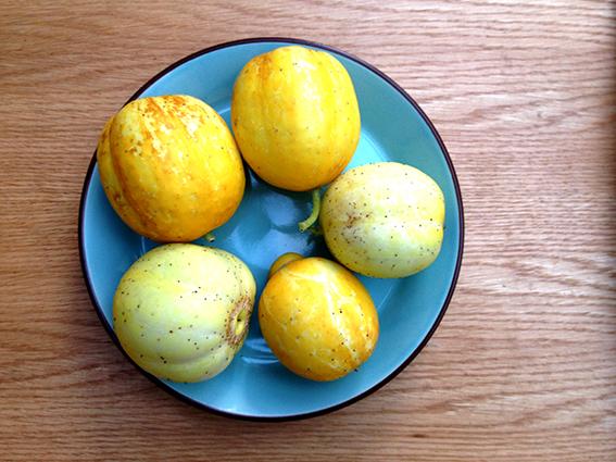 lemon cukes on plate
