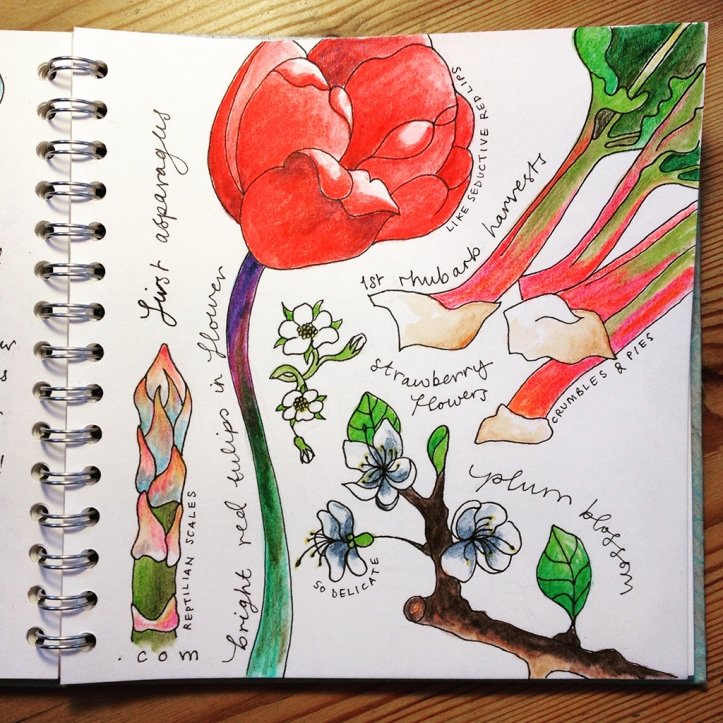 Allotment journal_Apr15_p2