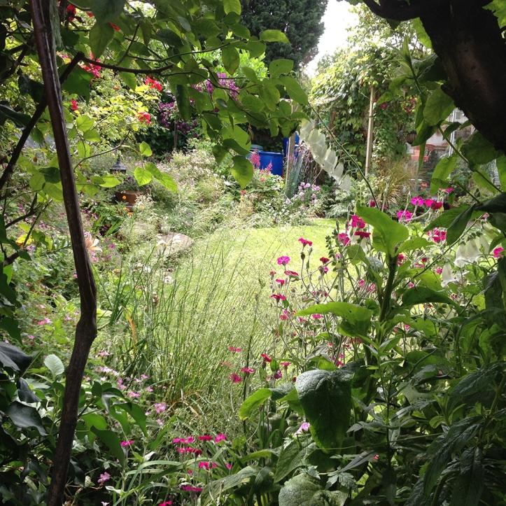 Mums garden 12
