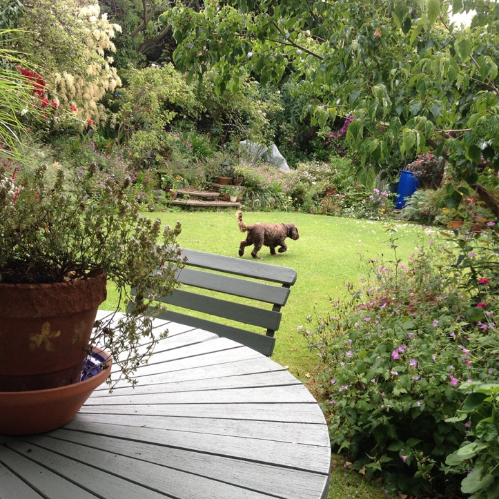 Mums garden 2