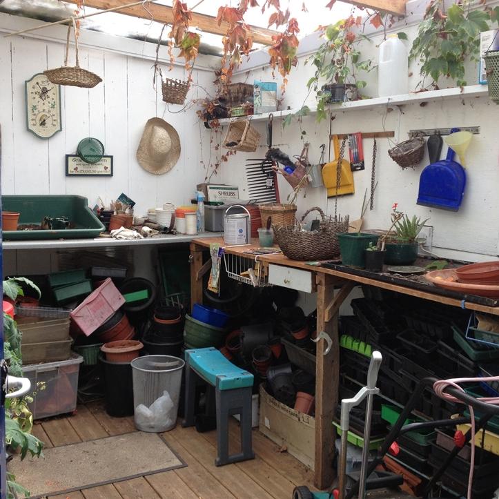 Mums garden 24