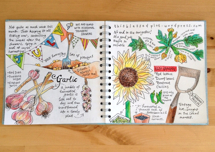 Allotment journal_July15