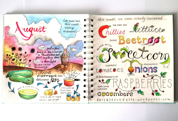 Allotment journal - August