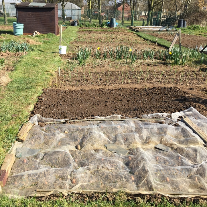 allotment end March16
