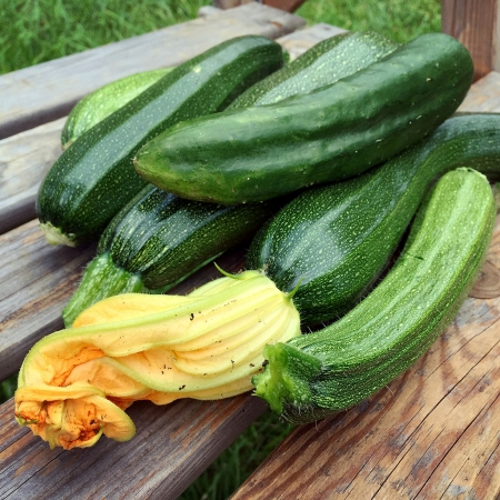 courgettes, cucmbers