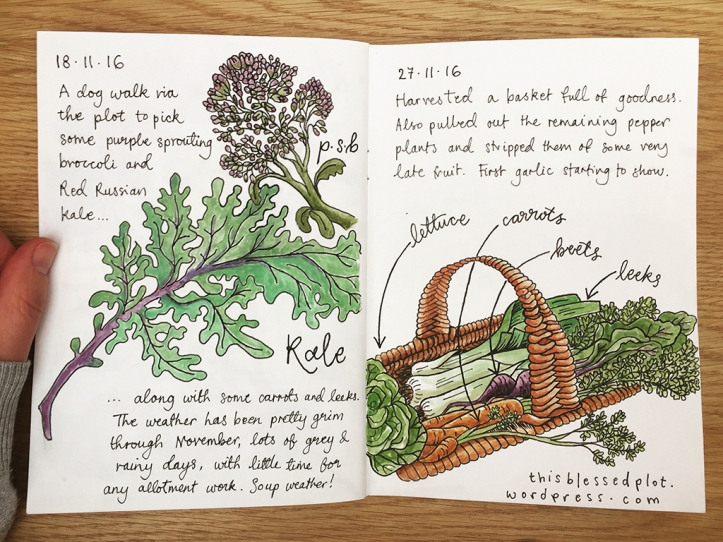 allotment-journal-18-11-27-11
