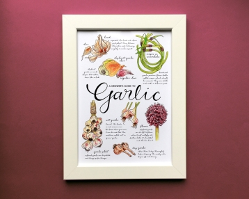 growers-guide-to-garlic-a4-1