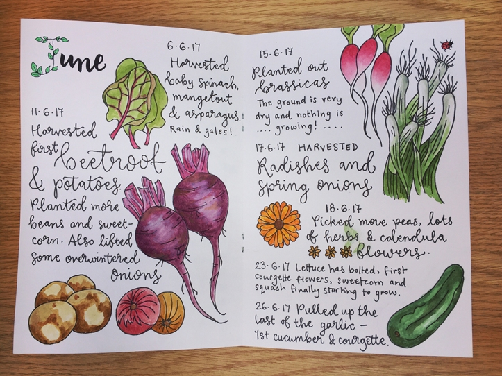 journal June