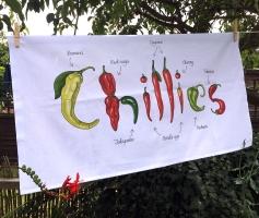 Chillies TT1
