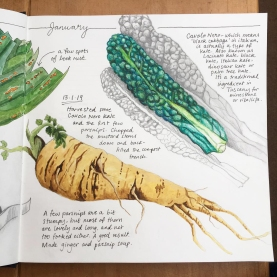 journal parsnip & kale